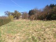 Terrain constructible à vendre à Freudenburg - Réf. 6206789