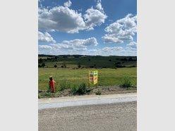 Building land for sale in Bertogne - Ref. 6895173