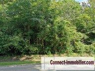 Terrain constructible à vendre à Desvres - Réf. 6801989