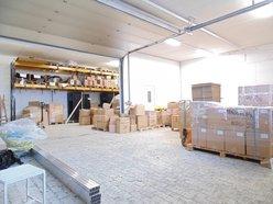 Entrepôt à louer à Mamer - Réf. 6479173