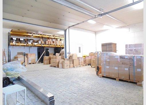 Entrepôt à louer à Mamer (LU) - Réf. 6479173