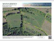 Terrain constructible à louer à Bettendorf - Réf. 4841557