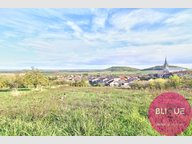 Terrain constructible à vendre à Bruley - Réf. 7125845