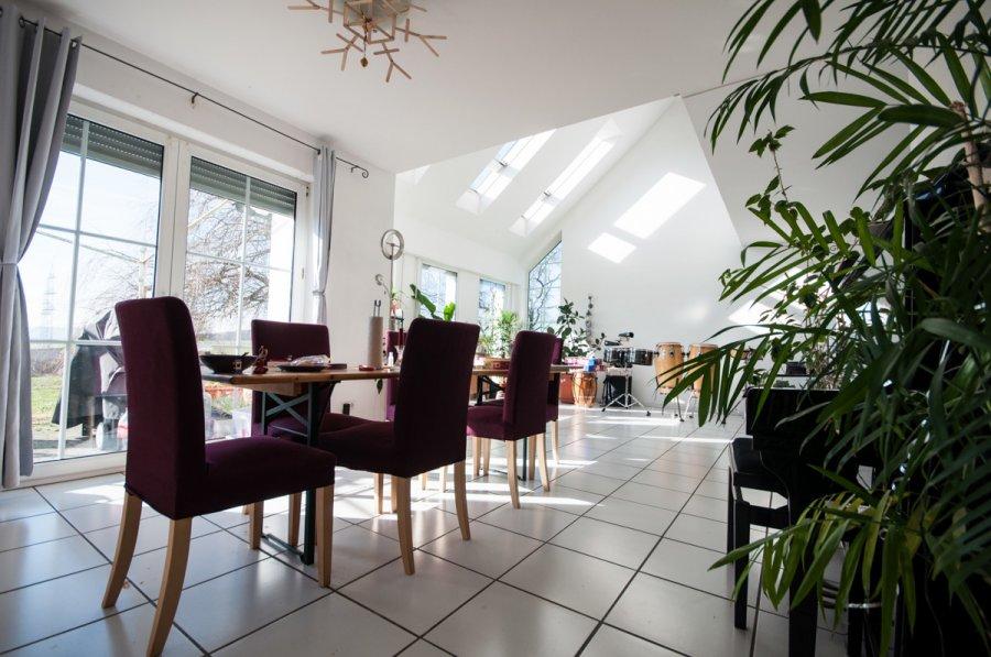 haus kaufen 8 zimmer 280 m² meckel foto 4