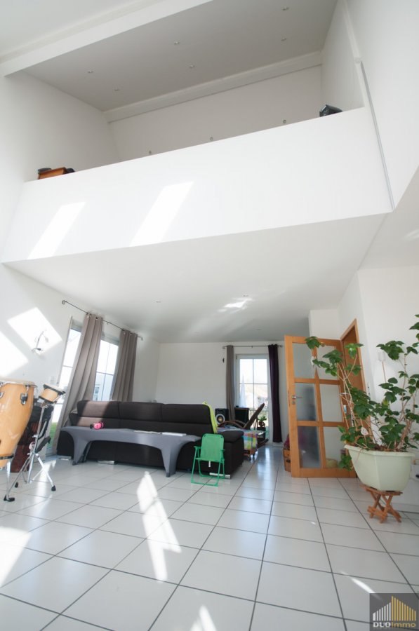 haus kaufen 8 zimmer 280 m² meckel foto 6