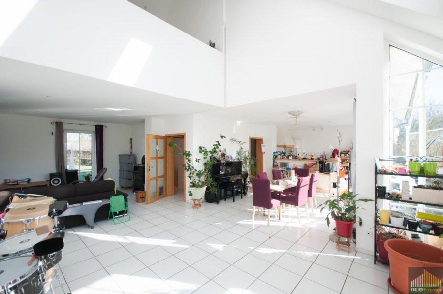 haus kaufen 8 zimmer 280 m² meckel foto 7