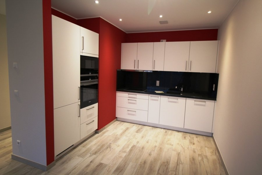 louer appartement 1 chambre 54 m² roeser photo 3