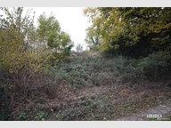 Terrain constructible à vendre à Dommartin-lès-Remiremont - Réf. 5757285