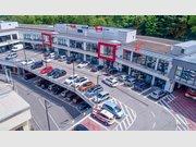 Local commercial à louer à Echternach - Réf. 6589285