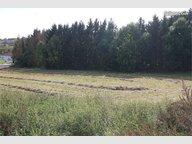 Terrain constructible à vendre à Folkling - Réf. 6069605