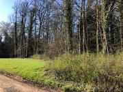 Terrain constructible à vendre à Bar-le-Duc - Réf. 7163749