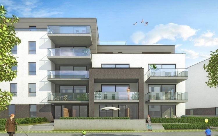 acheter appartement 3 pièces 125 m² ath photo 4