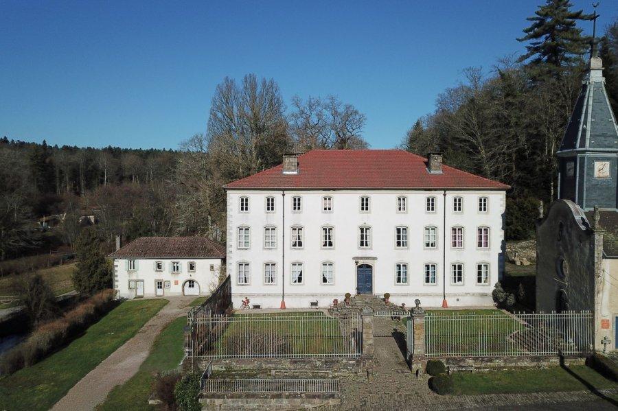 acheter château 14 pièces 1335 m² bains-les-bains photo 2