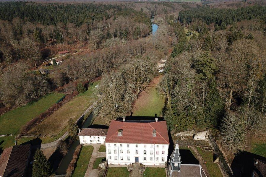 acheter château 14 pièces 1335 m² bains-les-bains photo 1