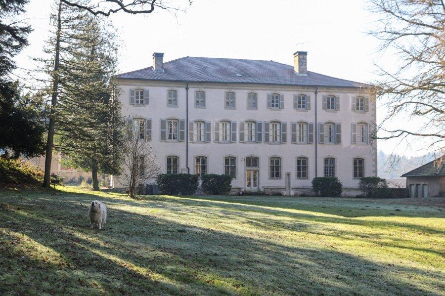 acheter château 14 pièces 1335 m² bains-les-bains photo 5