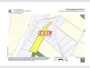 Terrain constructible à vendre à Rombach-Martelange - Réf. 6687349