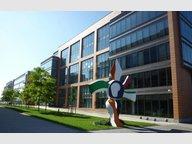 Bureau à louer à Luxembourg-Kirchberg - Réf. 6598005