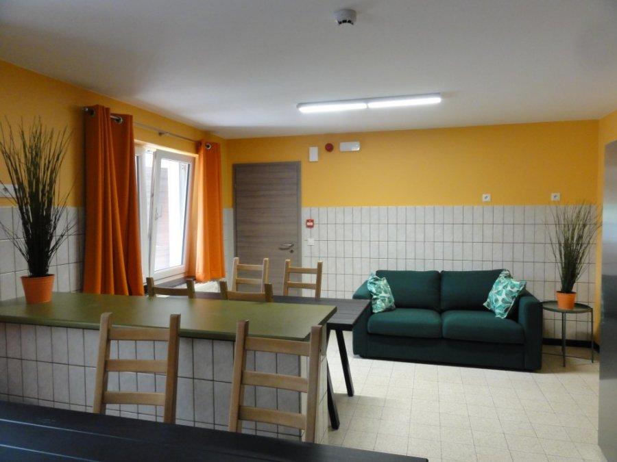 louer studio 1 pièce 17 m² bastogne photo 6