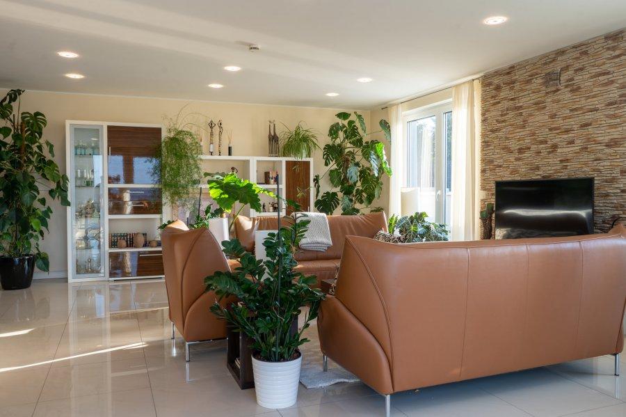 penthouse-wohnung kaufen 0 zimmer 197 m² trier foto 4