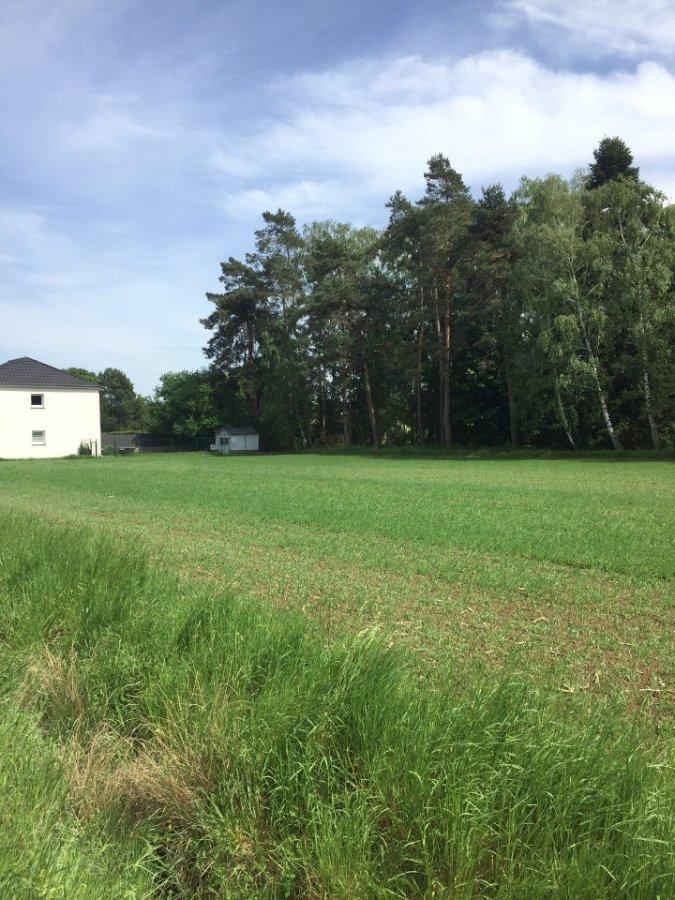 acheter maison 4 pièces 89 m² condé-northen photo 2