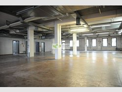 Retail for rent in Luxembourg-Gasperich - Ref. 6159269