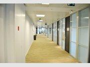 Bureau à louer à Luxembourg-Centre ville - Réf. 4910501