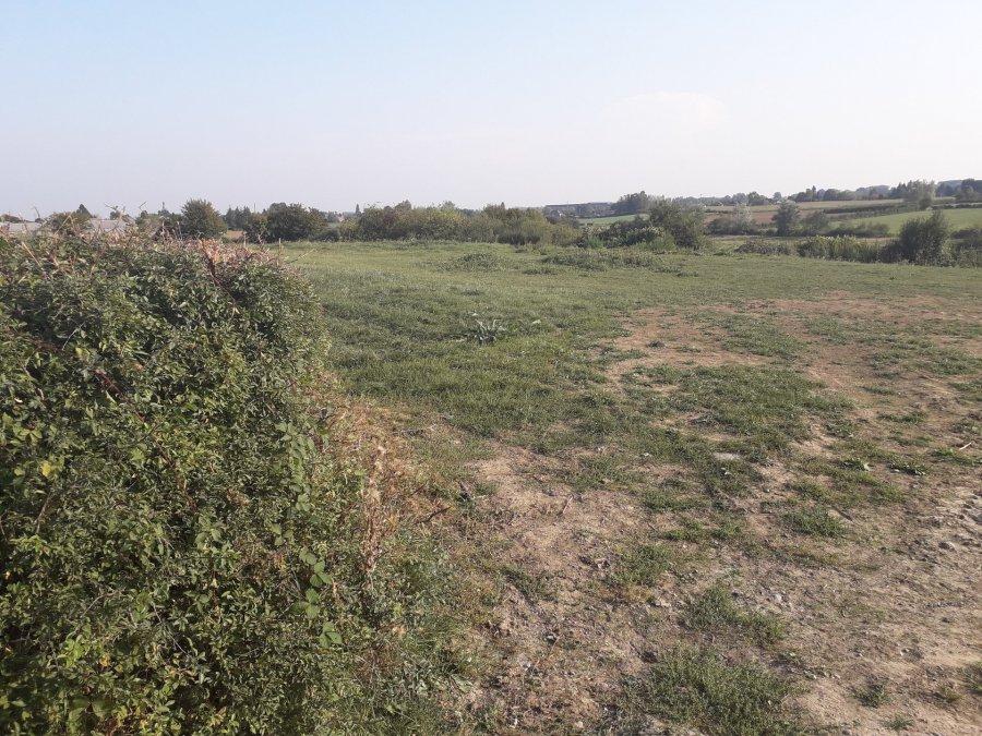 acheter terrain non constructible 0 pièce 729 m² berlaimont photo 1