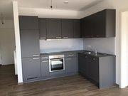 Appartement à louer 1 Chambre à Esch-sur-Alzette - Réf. 5172149