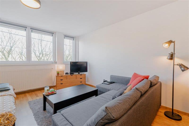 apartment for rent 0 room 40 m² mons photo 2