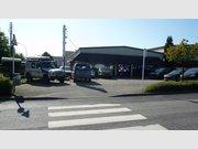 Retail for rent in Mersch (Mierscherbierg,-um) - Ref. 6530261