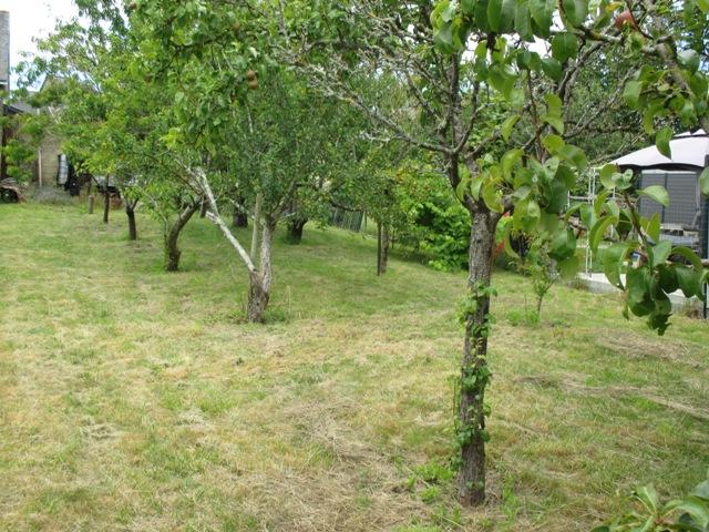 acheter terrain constructible 0 pièce 250 m² pontchâteau photo 3