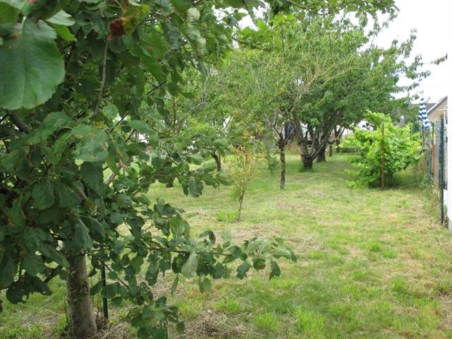 acheter terrain constructible 0 pièce 250 m² pontchâteau photo 4