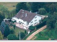 Ferme à vendre 4 Chambres à Taintrux - Réf. 6200789