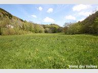 Terrain constructible à vendre à Basse-sur-le-Rupt - Réf. 7193061