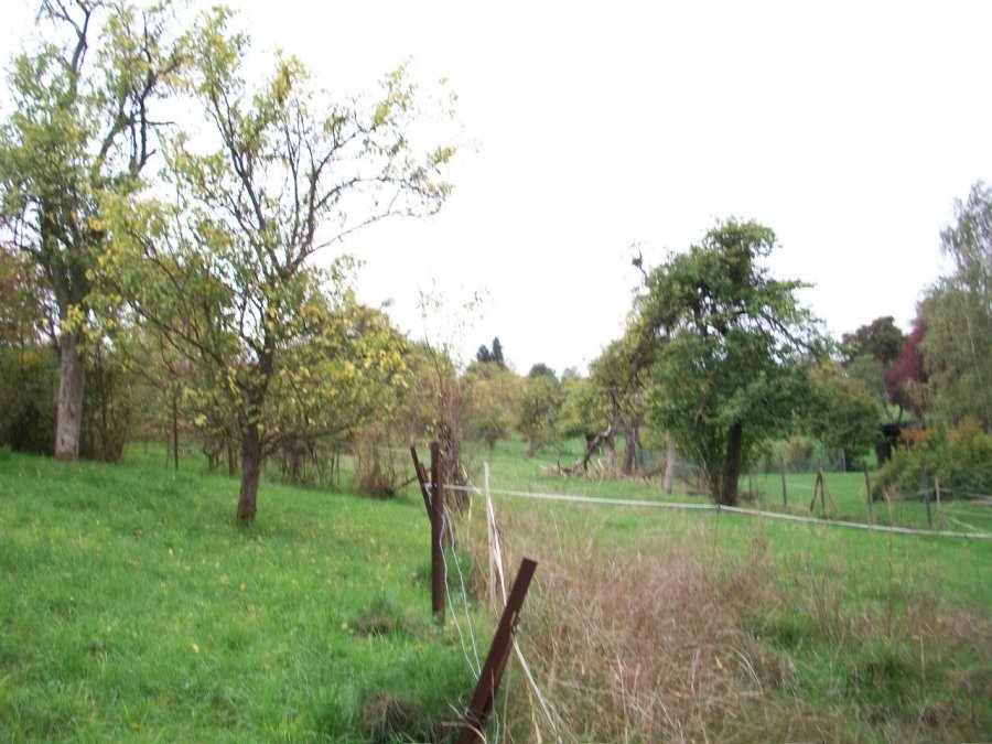building land for buy 0 bedroom 0 m² berbourg photo 3