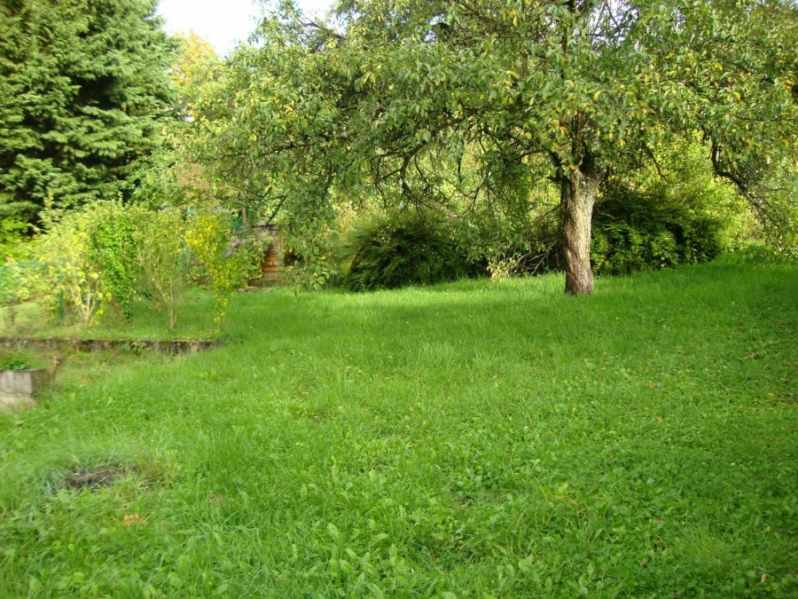 acheter maison jumelée 9 pièces 195 m² algrange photo 4