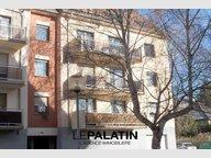 Appartement à louer F2 à Strasbourg - Réf. 4991973
