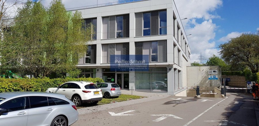 Entrepôt à louer à Windhof (Koerich)