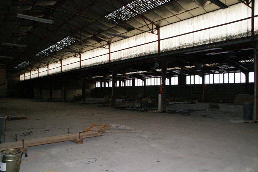 acheter local commercial 0 pièce 3102 m² velaines photo 6