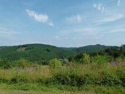 Gewerbliches Grundstück zum Kauf in Irrhausen - Ref. 6571253