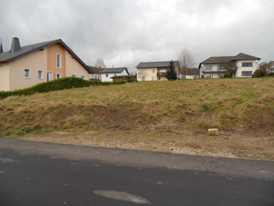 building land for buy 0 room 0 m² lambertsberg photo 7