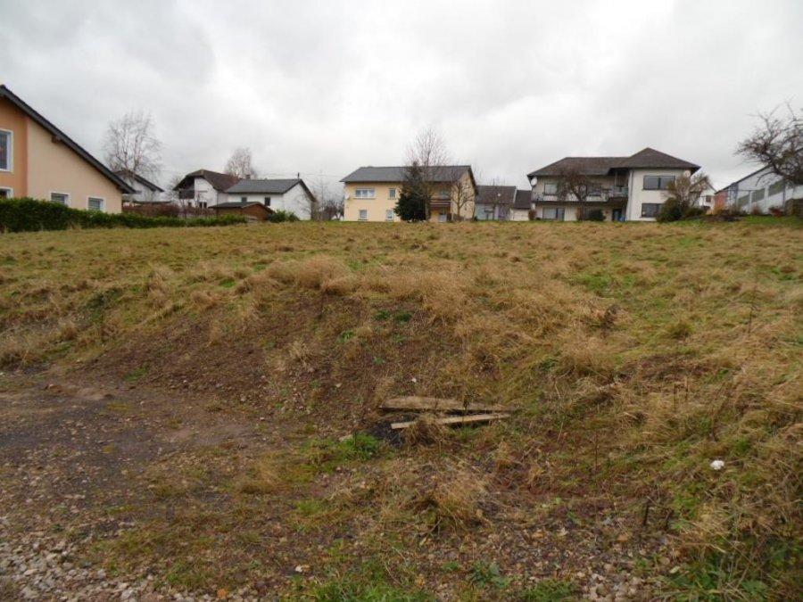 building land for buy 0 room 0 m² lambertsberg photo 4