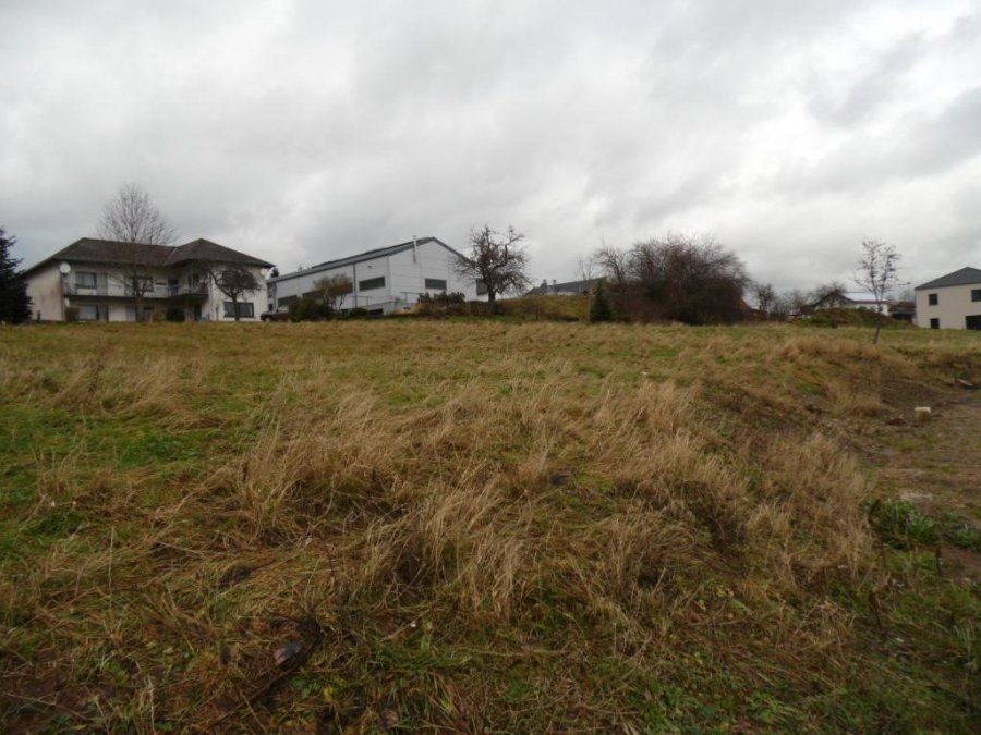 building land for buy 0 room 0 m² lambertsberg photo 5