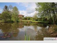 Maison à vendre 3 Chambres à Saint-Dié-des-Vosges - Réf. 6362886
