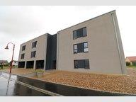 Appartement à louer F5 à Gavisse - Réf. 6580742