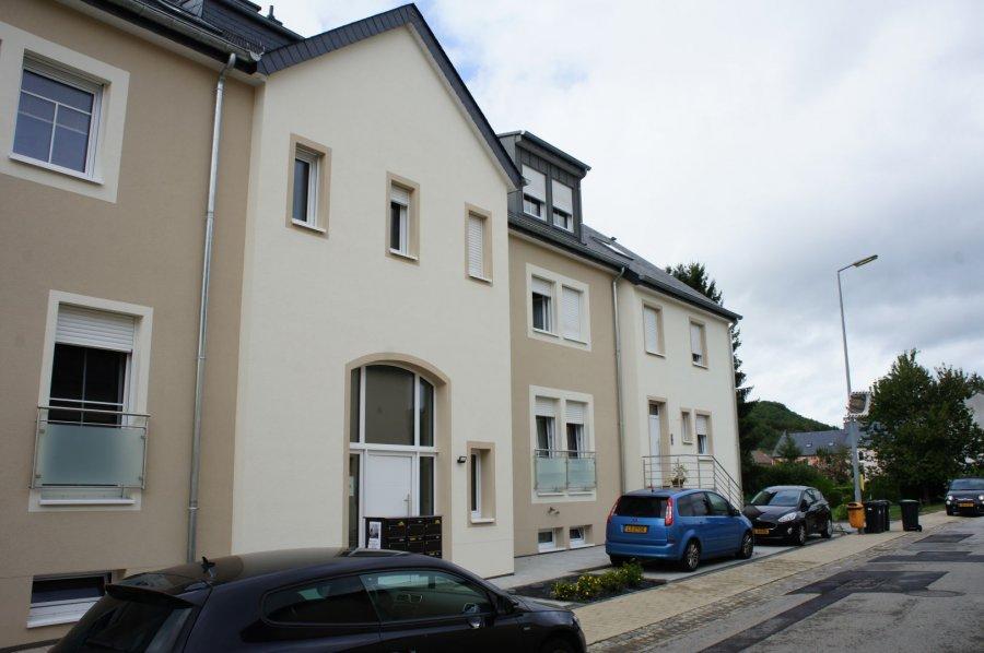 acheter duplex 2 chambres 172 m² erpeldange (ettelbruck) photo 1