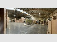 Warehouse for rent in Luxembourg-Hollerich - Ref. 7085062