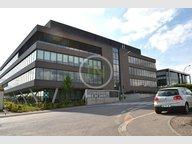 Office for rent in Leudelange - Ref. 7122438