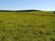 Terrain constructible à vendre à Louvigny - Réf. 6562326