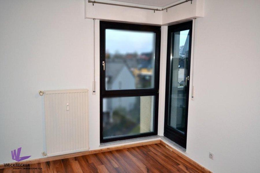 apartment for rent 2 bedrooms 82 m² berchem photo 7